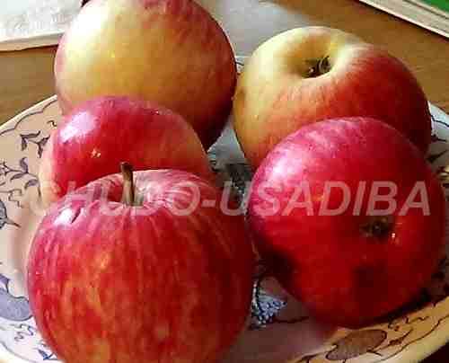 яблоки печеные с коньяком - фото